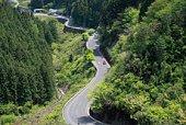 Curvy road, High angle view, Tokushima Prefecture, Shikoku, Japan