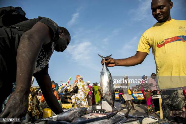 A customer holds a fish at the Soumbedioune fish market in Dakar Senegal on Friday July 28 2017 Senegalese voters will elect a new parliament on...