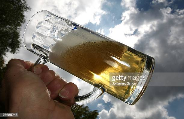 A customer uplifts a mug of freshly draught beer in a beer garden near Lake Ammersee on September 12 2007 in Stegen am Ammersee Germany The German...