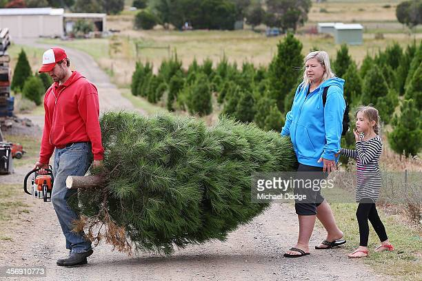 Customers carry their Christmas tree to be taken home on December 16 2013 in Melbourne Australia