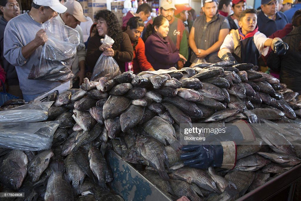 Operations at mexico 39 s largest fish market getty images for City fish market
