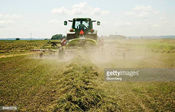 Cut alfalfa is raked into rows before being baled on the Freeburg Hay Farm in Gayville South Dakota US on Monday Aug18 2008 Net farm income in 2008...