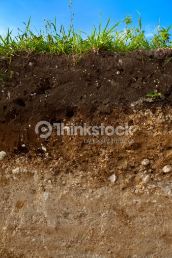Cut of ground : Stock Photo