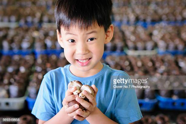 Cute Asian boy holding a mushroom.