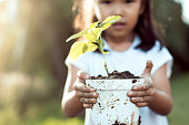 Cute asian little child girl holding young tree in pot for prepare plant on ground as save world concept in vintage color tone