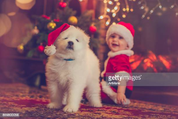 Cute baby boy and puppy in Christmas