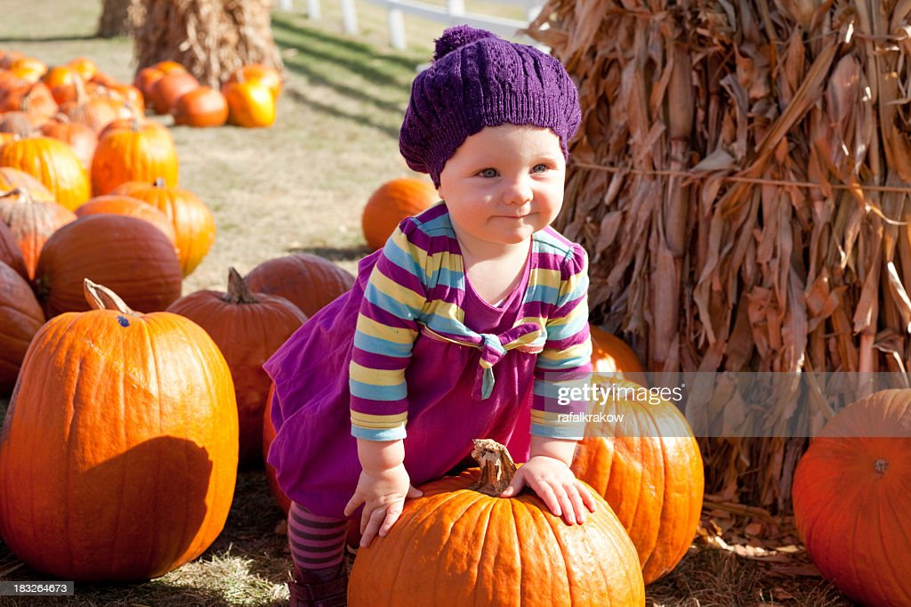 A cute baby girl standing with a pumpkin in a pumpkin patch : Stock Photo