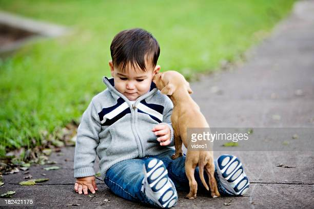 Cute beige puppy licks the ear of a little boy on the ground