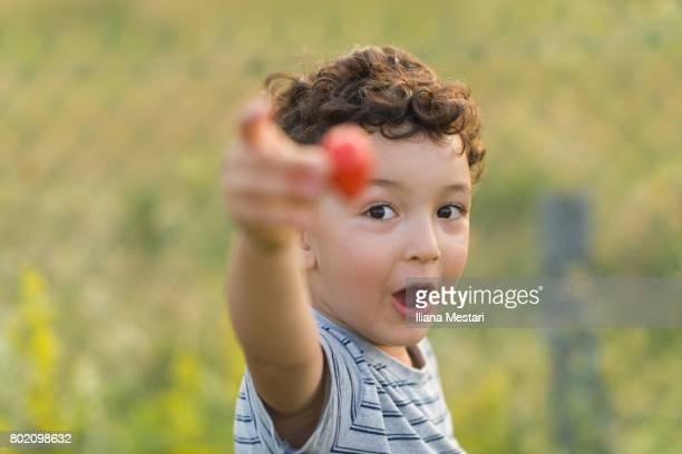 Cute boy enjoying freshly picked strawberries from the garden