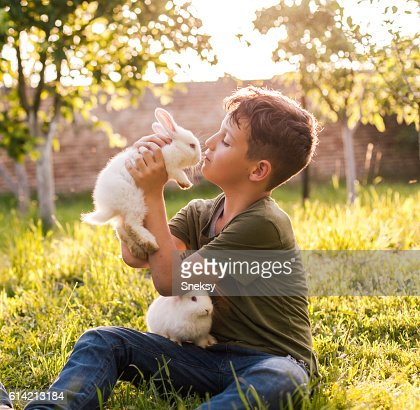 Cute boy holding rabbit : Stock Photo