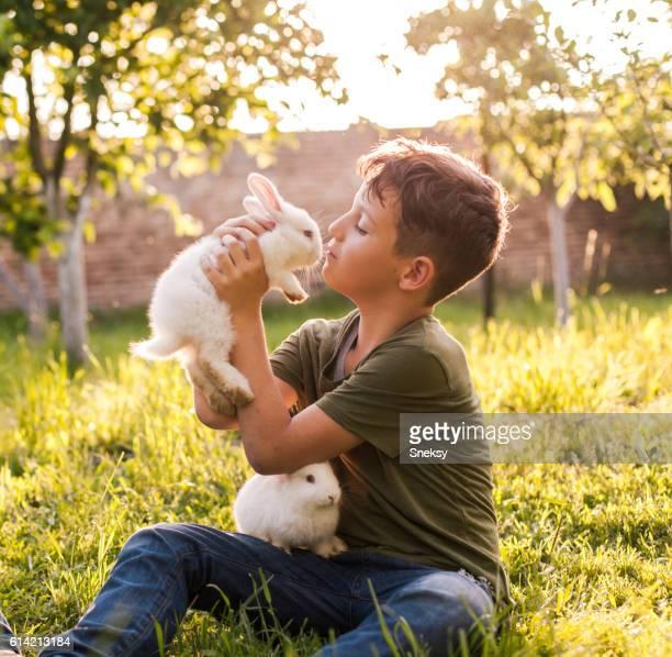 かわいい男の子保持 ウサギ