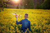 Adorable Boy holds toy plane in his hand on sunset in summer day. Back view.