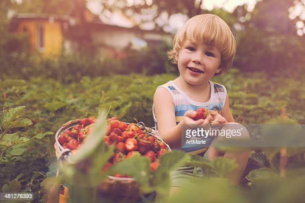 Süße Junge mit Erdbeere