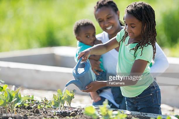 Abeberamento um jardim fofinho criança