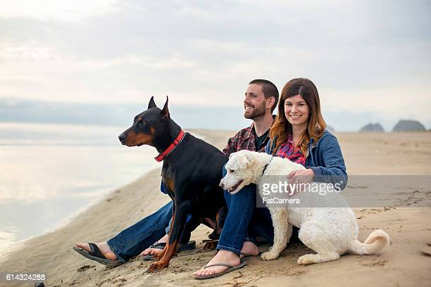 Cute couple sitting at the beach with their dogs
