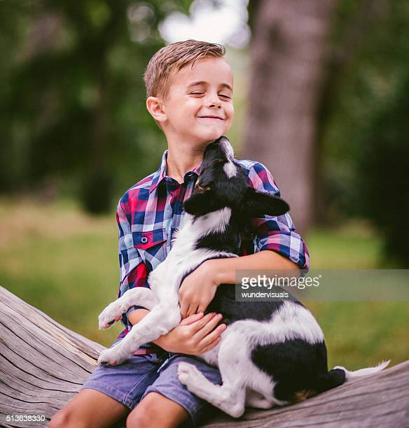 Cute crossbreed puppy dog licking boys face sitting on tree
