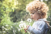 Beautiful curly child girl looking like dandelion blowing dandelion in summer park in sunny day with sunlight