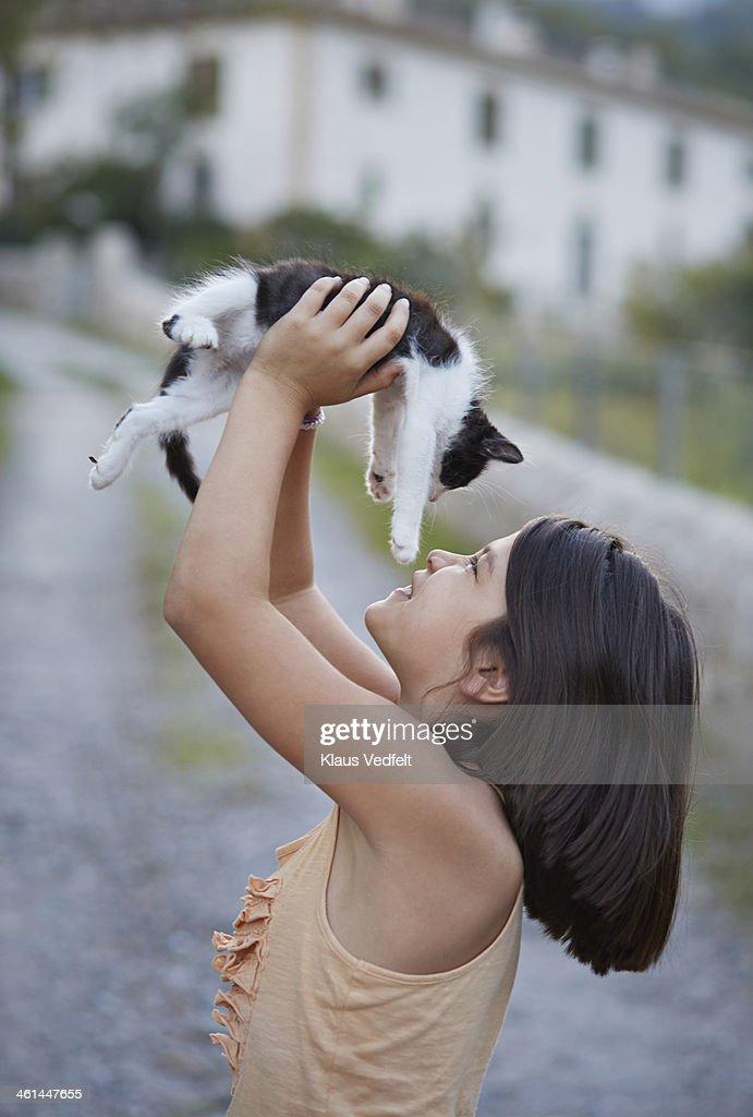 are calico cats rare