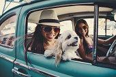 cute girls and car