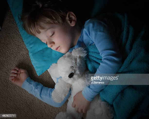 Cute Little Boy Asleep with His Teddybear