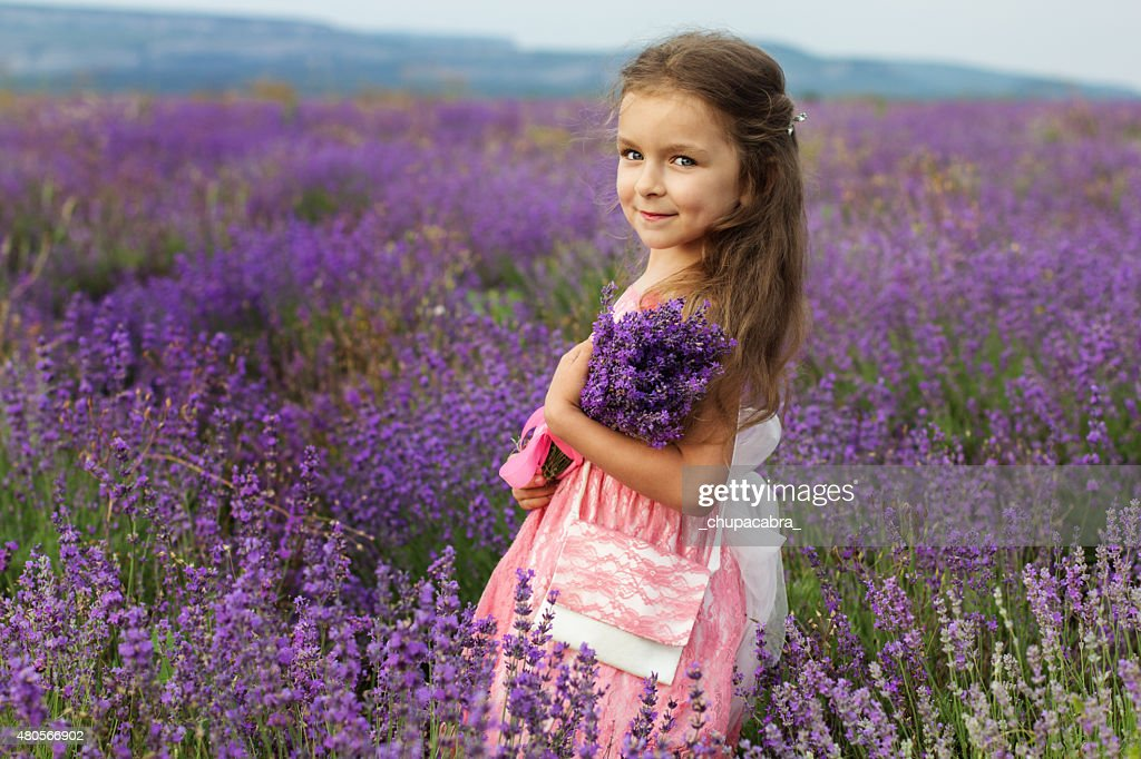 Cute little child girl in lavender field with bouquet : Stock Photo