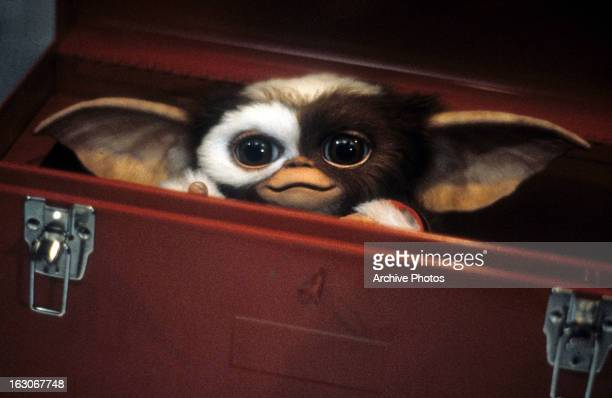Cute little furry thingy hides in a tool box in a scene from the film 'Gremlins' 1984