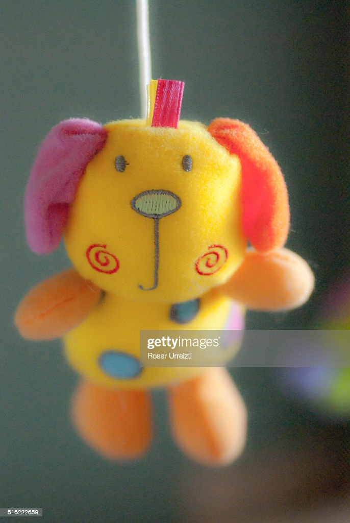 Little Toy Dogs : Cute little toy dog stock photo getty images