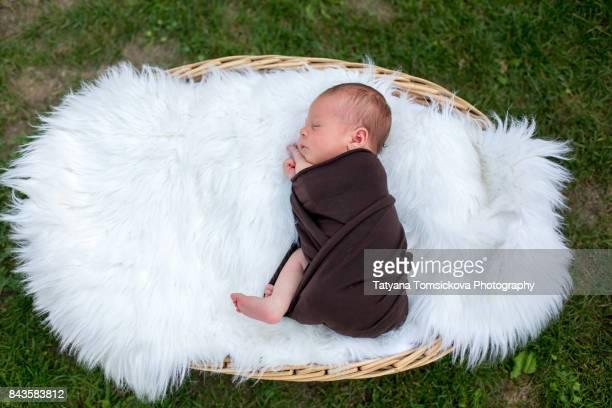 Cute newborn baby boy, sleeping peacefully in basket in flower garden