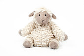 Cute white soft toy of little sheep isolated on a white background. Concept of babies first soft toy.