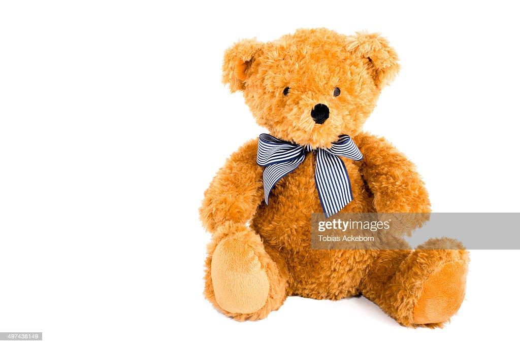 Cute teddy bear isolated on white
