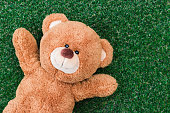 Cute teddy bear on green grass background