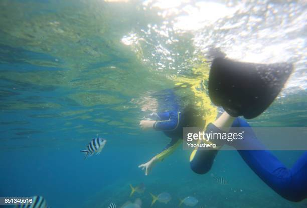 Cute teenage boy Snorkeling underwater