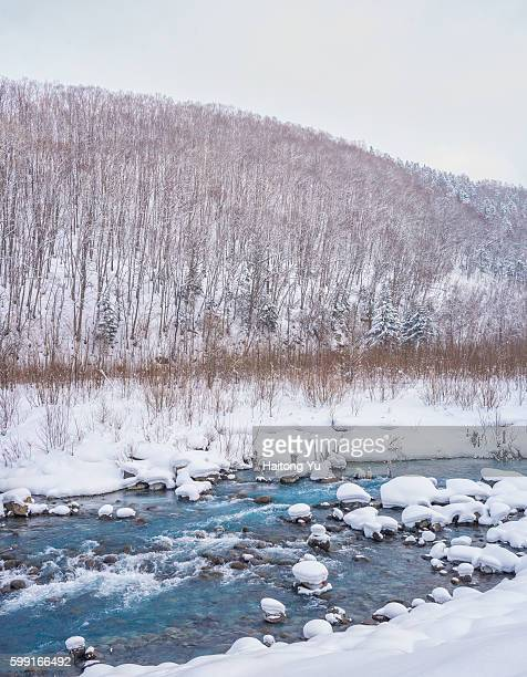 Cyan colored mineral water flowing out of Blue Pond (白金の青い池), Hokkaido, Japan.