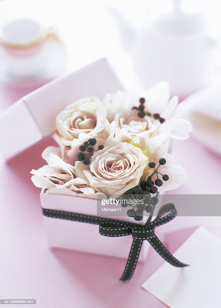Cyclamen rose and hedera berry arranged in pink gift box with black ribbon : Stock-Foto