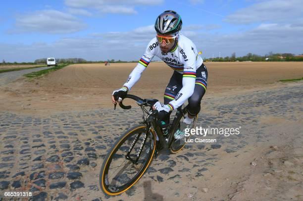 115th Paris Roubaix 2017 / Training Day 1 Peter SAGAN / Carrefour de L'Arbre / Training / PR /