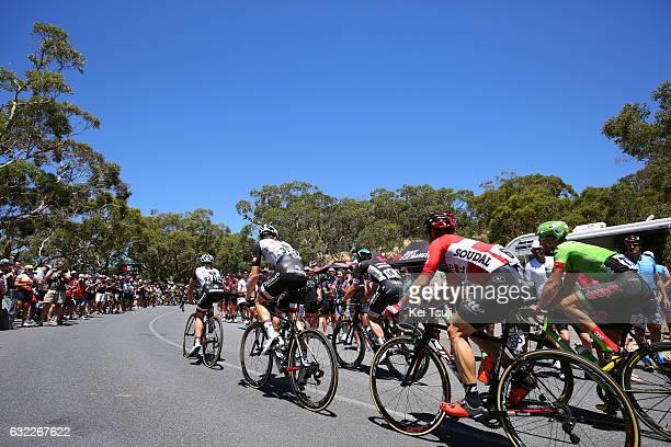 19th Santos Tour Down Under 2017/ Stage 5 Men Peloton / Old Willunga Hill / McLaren Vale Willunga Hill 382m / BikeExchange Stage / Men / TDU / ©Tim...