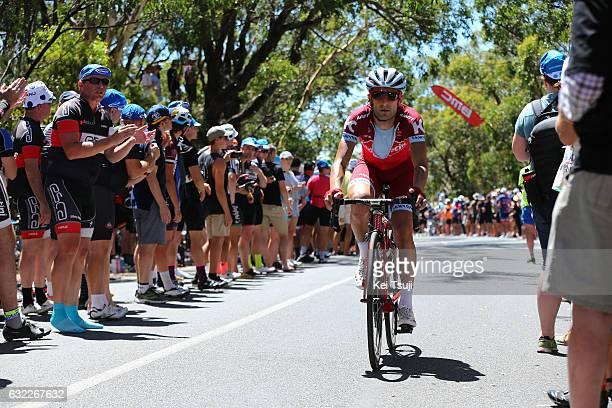 19th Santos Tour Down Under 2017/ Stage 5 Men Tiago MACHADO / Old Willunga Hill / McLaren Vale Willunga Hill 382m / BikeExchange Stage / Men / TDU /...