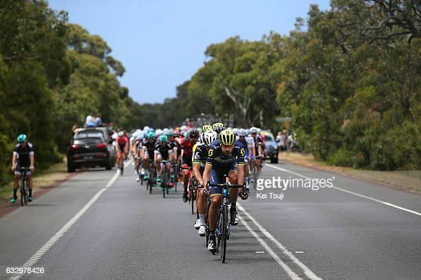 3rd Cadel Evans Great Ocean Road Race 2017 / Men Sam BEWLEY / Geelong Waterfront Geelong Waterfront / Men / Great Ocean Road Race / ©Tim De...