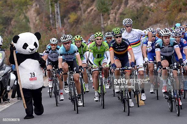 3th Tour of Beijing 2013 / Stage 3 Illustration Illustratie / PANDA Bear Oers Beer Fans Supporters / Peleton Peloton / MARTIN Tony / COSTA Rui...