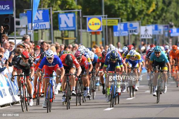 5th Brussels Cycling Classic 2017 Arrival / Arnaud DEMARE / Andre GREIPEL / Kenny DEHAES / Marko KUMP / Brussels Brussels /