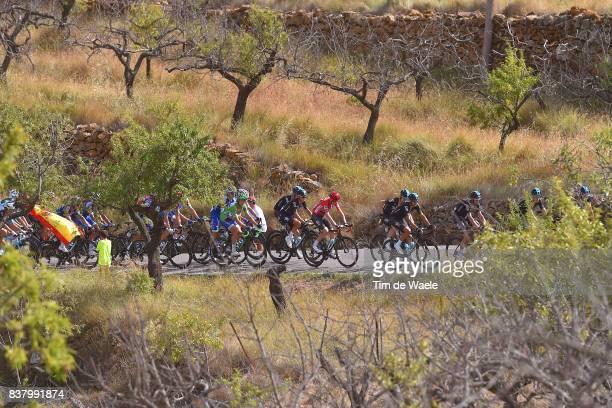 72nd Tour of Spain 2017 / Stage 5 Peloton / Alto de la Serratella Mountains / Landscape / Team Sky / Chris FROOME Red Leader jersey / Matteo TRENTIN...