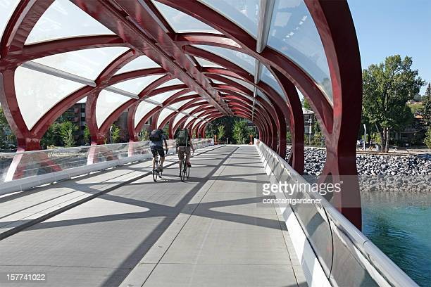 Ciclismo in Peace Bridge Calgary