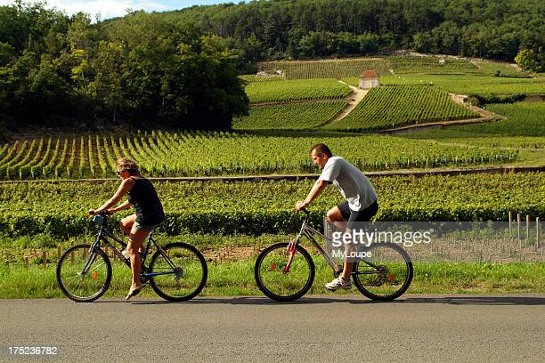 Cycling in FranceCyclists Ride Through Vineyards of the Cote de Nuits at Gevrey Chambertin on the D31 road France