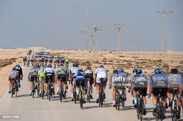 Tour of Qatar 2013 / Stage 5 Illustration Illustratie / Bordures Echelons Waaiers / Peleton Peloton / Landscape Paysage Landschap / Al Zubara Fort...