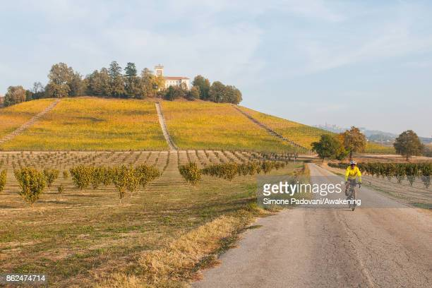 A cyclist goes on a street close to a vineyard of Barolo on October 17 2017 in the Barolo region Italy Because of the high summer temperatures...