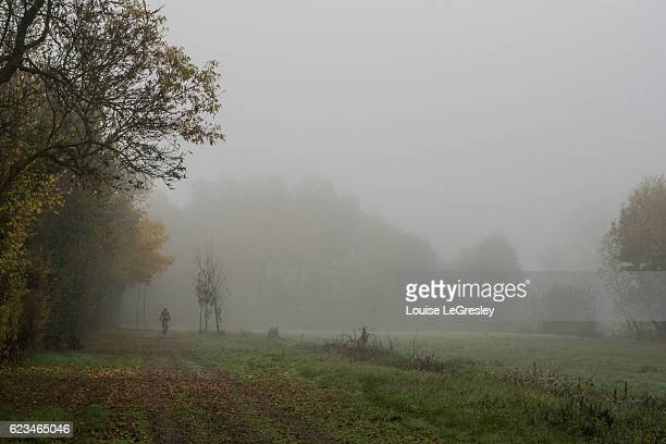 Cyclist on a treelined footpath on a foggy autumn morning