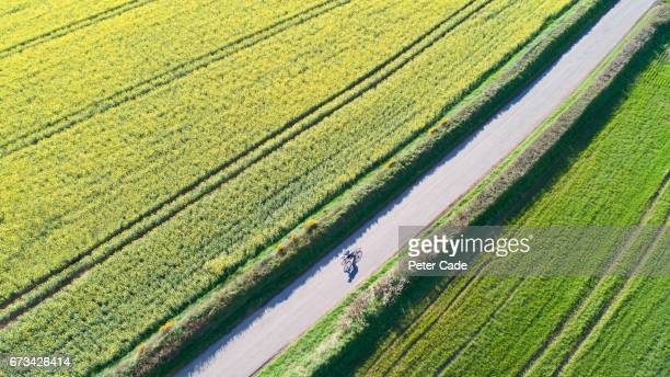 Cyclist on country road between two fields
