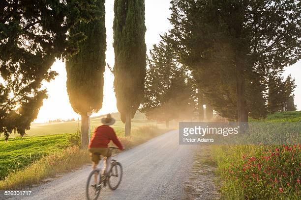 Cyclist on dirt road at sunset, Tuscany, Italy
