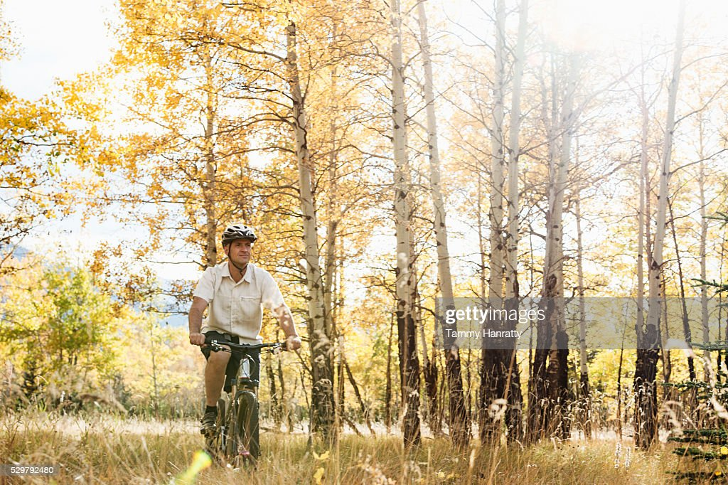Cyclist riding in forest : Stock-Foto