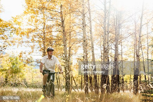 Cyclist riding in forest : Bildbanksbilder
